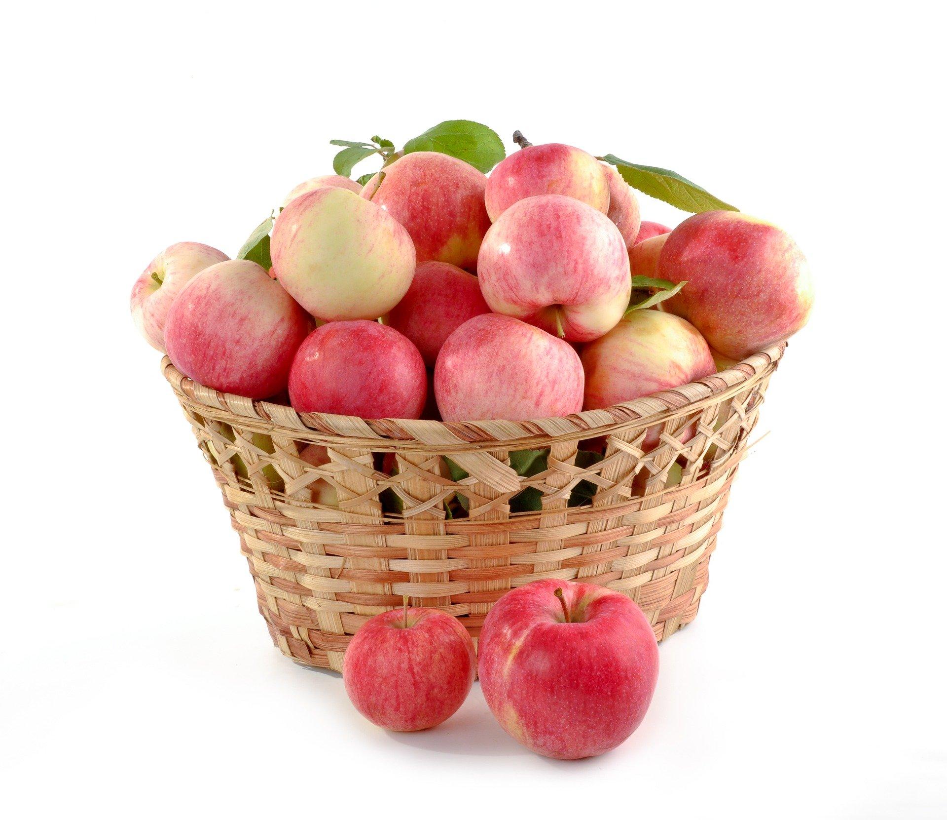 koš plný jablek